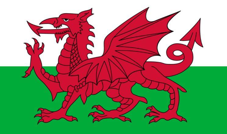 2012 GC World Team Championship Tier 2 – Champion: Wales